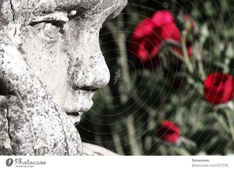 Medusa's victims Boy (child) Red rose Rose Flower Sculpture Child Lips Moss Limestone Eros Calm Emotions Romance Timeless Captured Shabby Past Gaze Grief
