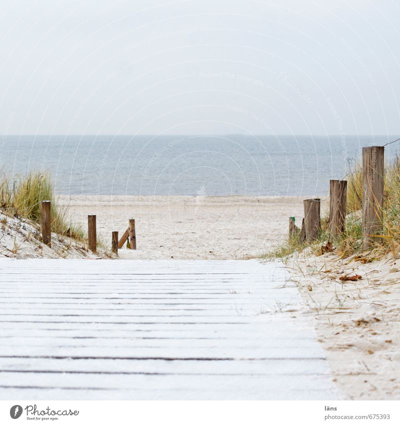 off-season Environment Nature Landscape Elements Sand Air Water Sky Winter Grass Coast Beach Baltic Sea Ocean Vacation & Travel Serene Beginning Relaxation
