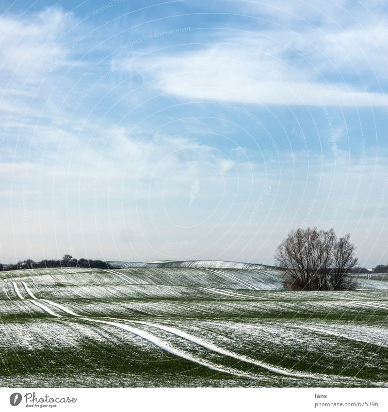 winter dress Environment Nature Landscape Plant Earth Sky Clouds Winter Ice Frost Snow Tree Field Hill Line Blue Green White Tracks Colour photo Deserted