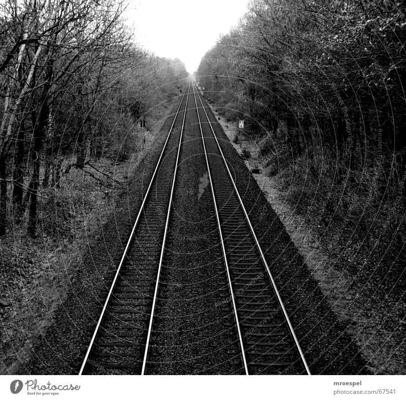 railway Railroad tracks Medium format Transport railway tracks Black & white photo nowhere Line