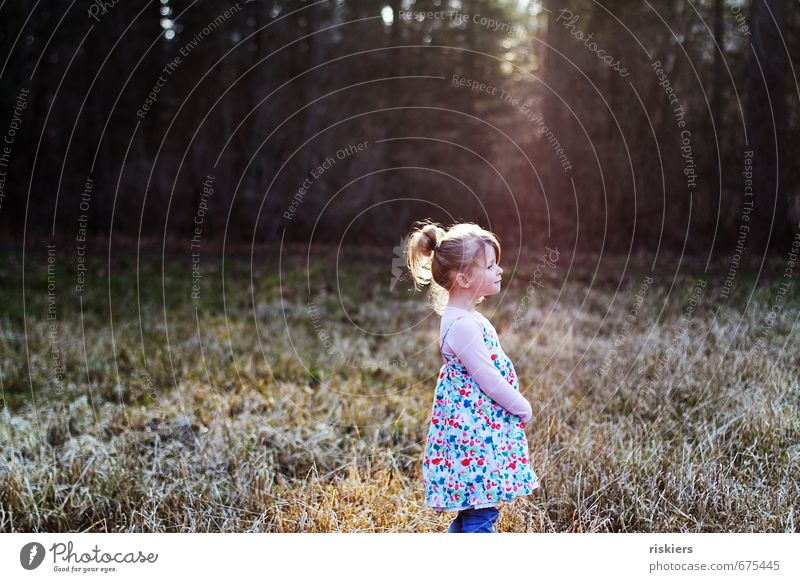 dreams of spring Human being Feminine Child Girl Infancy Life 1 3 - 8 years Environment Nature Sunrise Sunset Sunlight Spring Winter Beautiful weather Park