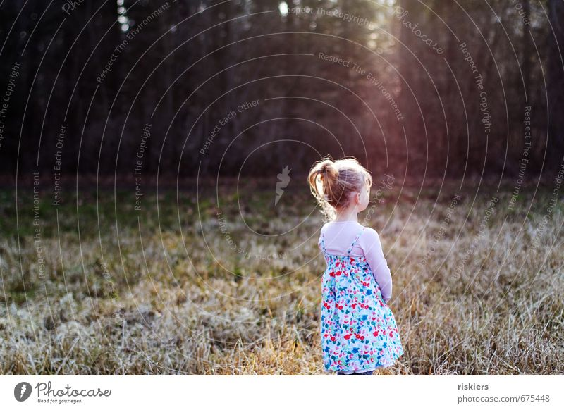 Human being Child Nature Sun Relaxation Girl Forest Environment Life Meadow Feminine Spring Natural Dream Park Contentment