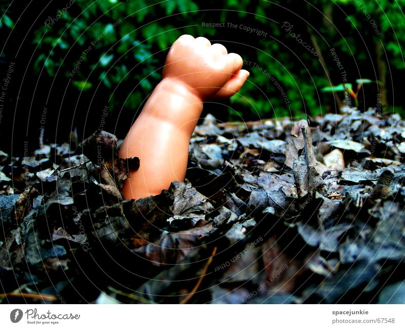 lost Hand Fist Toys Bury Leaf Decompose Doomed Loneliness Forest Dark Doll doll-poor Arm Needy