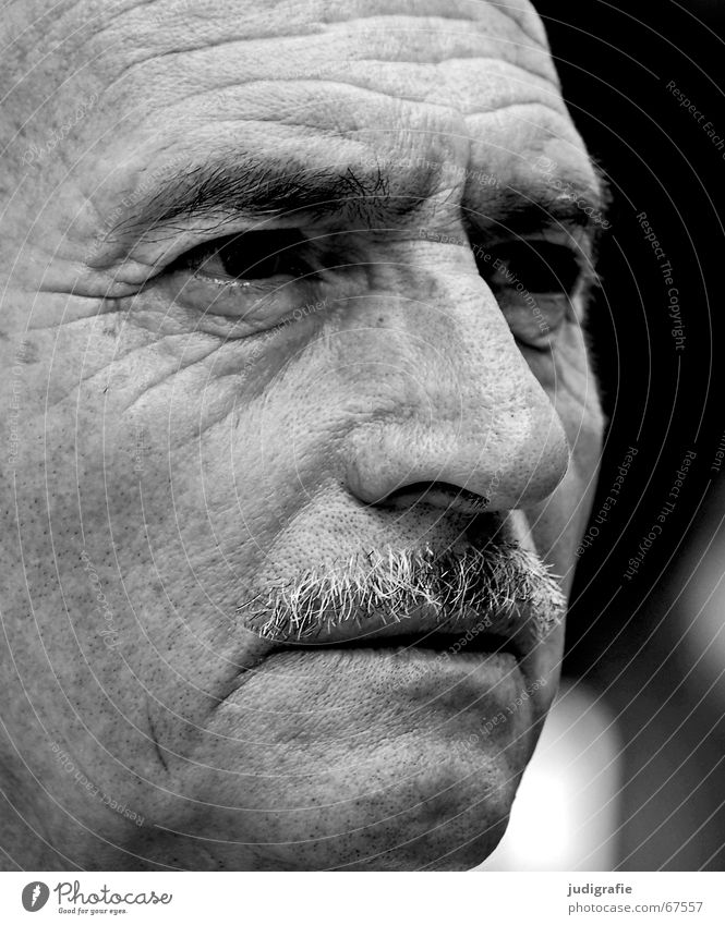 disbelief Portrait photograph Man Senior citizen Disbelief Skeptical Expectation Facial hair Wisdom Think Philosopher Paternal instinct Black & white photo Face