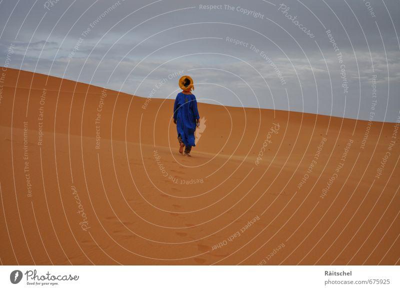 Sky Landscape Clouds Warmth Sand Power Dangerous Hill Desert Serene Brave Beach dune Wanderlust Footprint Caution Thirst