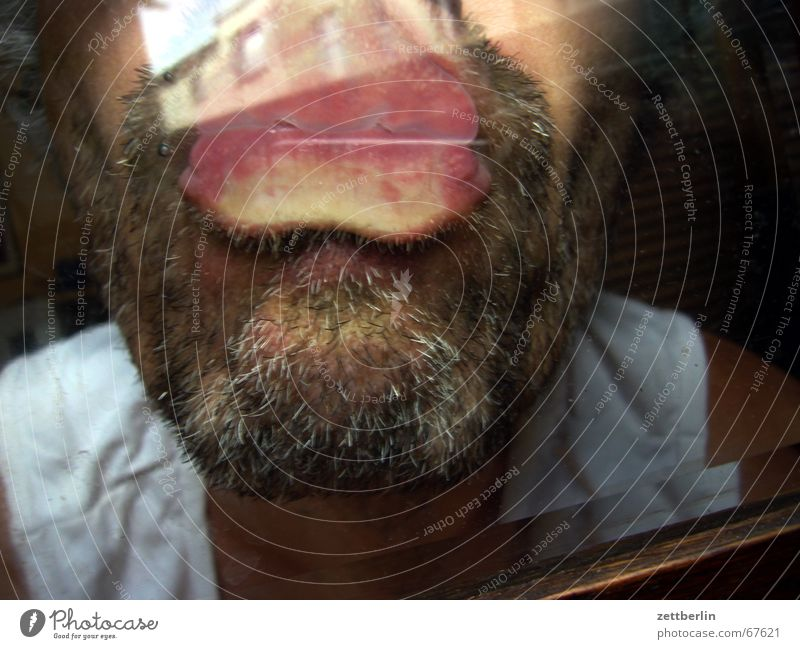 kiss Kissing Upper lip Lower lip Chin Facial hair Stopper Pane robber chief Glass protect windows Suction pad