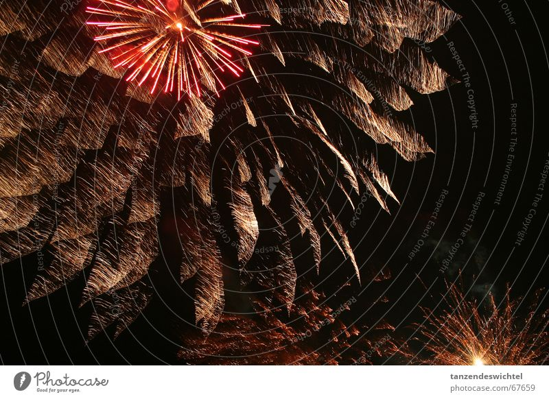 but now we are...! Night Party Firecracker Loud Bang Light Dark Bright Feasts & Celebrations flash