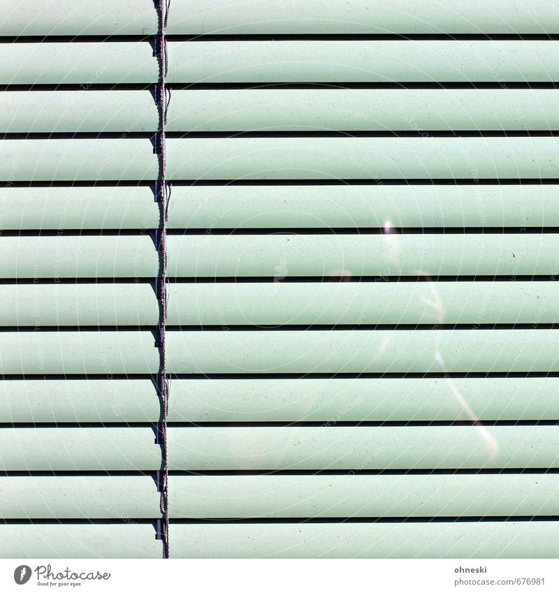 behind bars Human being 1 Facade Window Roller shutter Glass Green Self portrait Colour photo Subdued colour Exterior shot Abstract Pattern