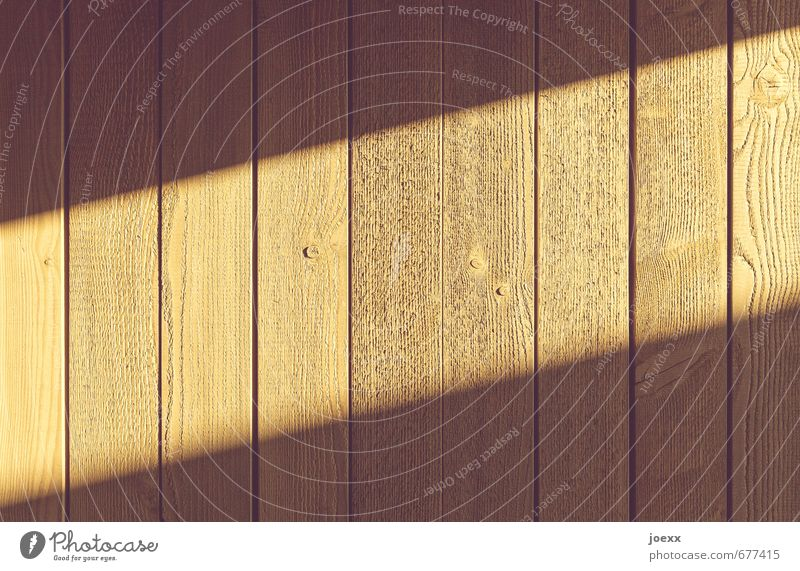 / Wall (barrier) Wall (building) Fence Wood Authentic Bright Long Brown Column Colour photo Exterior shot Pattern Structures and shapes Deserted Light Shadow