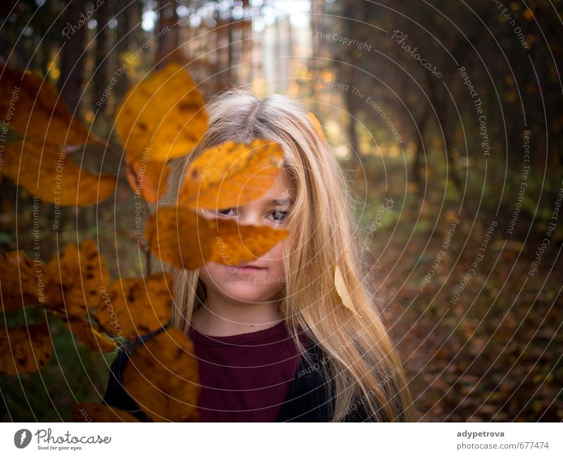 Autumn girl Human being Child Girl Body Skin Head Hair and hairstyles Face Eyes 1 3 - 8 years Infancy Environment Nature Landscape Plant Tree Grass Leaf Garden