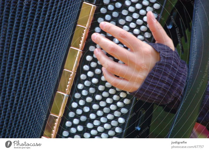 Woman Hand Music Sound Musical instrument Rhythm Accordion
