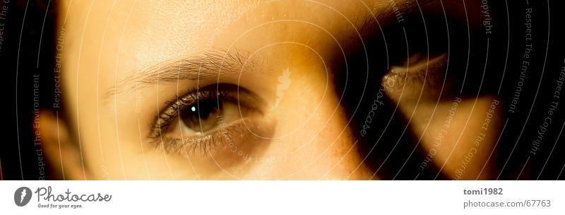 Beautiful Sun Eyes Dream Mysterious Trust Human being