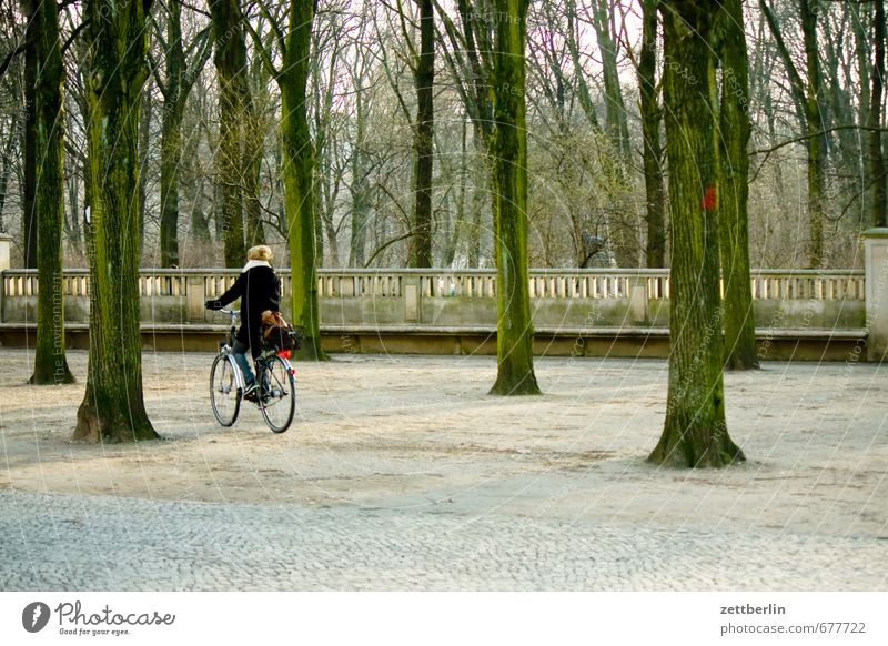 Woman City Tree Forest Lanes & trails Architecture Spring Berlin City life Bicycle Tourism Back Places Trip Copy Space Cycling