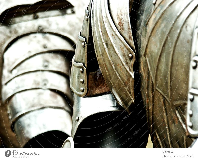 rüsti*g Flower Aristocracy Exclusion Iron plate Shoulder Safecracker Bronze Big shot Armour Protective clothing Sporting event Lacking Battle disarm Knight