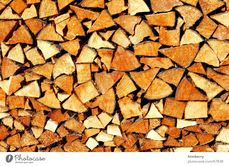 Tree Winter Wood Energy Electricity Tree trunk Raw materials and fuels Firewood Stack of wood Timber