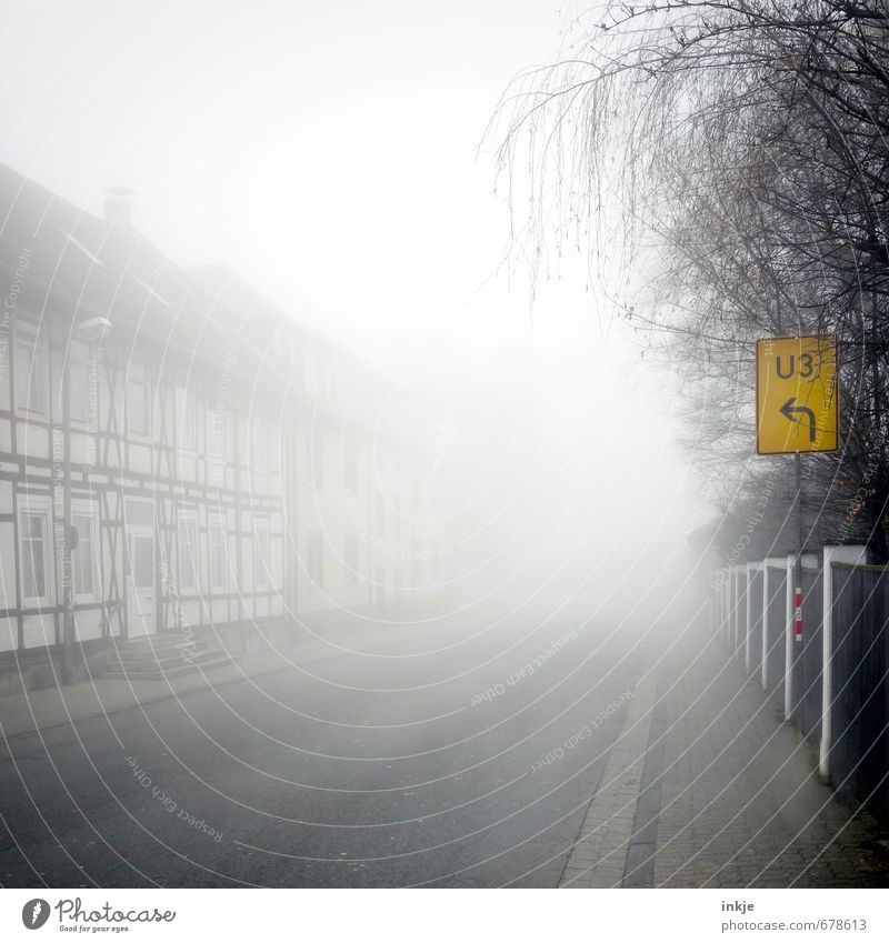 City Tree House (Residential Structure) Winter Dark Environment Street Autumn Lanes & trails Garden Facade Fog Transport Climate Signage Digits and numbers