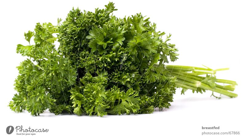 parsley Parsley Green Kitchen Herbs and spices Lunch Delicious Healthy Nutrition