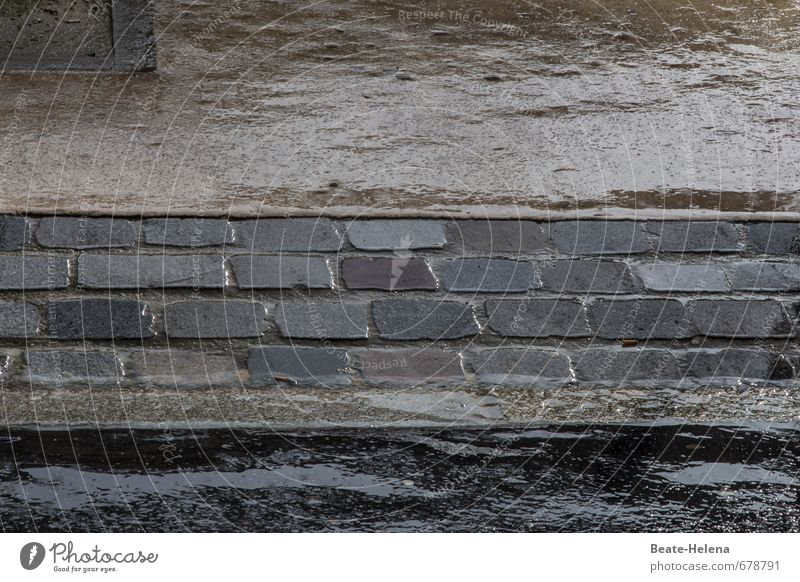 Weather needs moisture for the skin Beautiful Wellness Environment Bad weather Rain Town Downtown Deserted Street Stone Water Wet Clean Brown Gray Black Asphalt