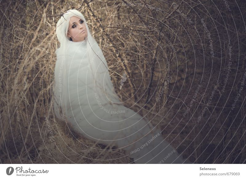 Moth Human being Feminine Woman Adults 1 Environment Spring Bushes Hair and hairstyles White-haired Long-haired Wig Animal Butterfly Cocoon Colour photo