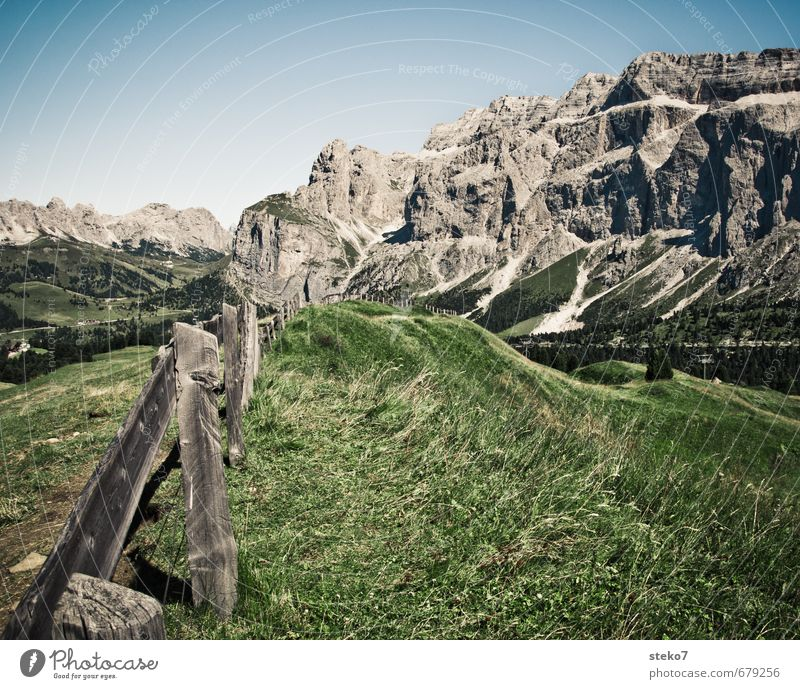 cowplanks Summer Beautiful weather Grass Alps Mountain Natural Blue Gray Green Vacation & Travel Dolomites Pasture Fence Wood Alpine pasture Colour photo