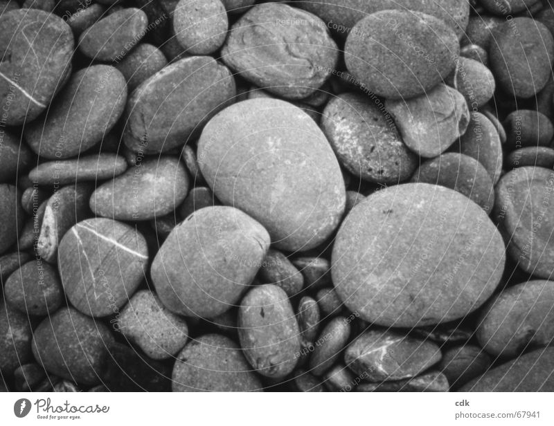 Nature Beach Gray Stone Small Large Multiple Round Many Collection Difference Accumulation Heap Pebble Size Stony