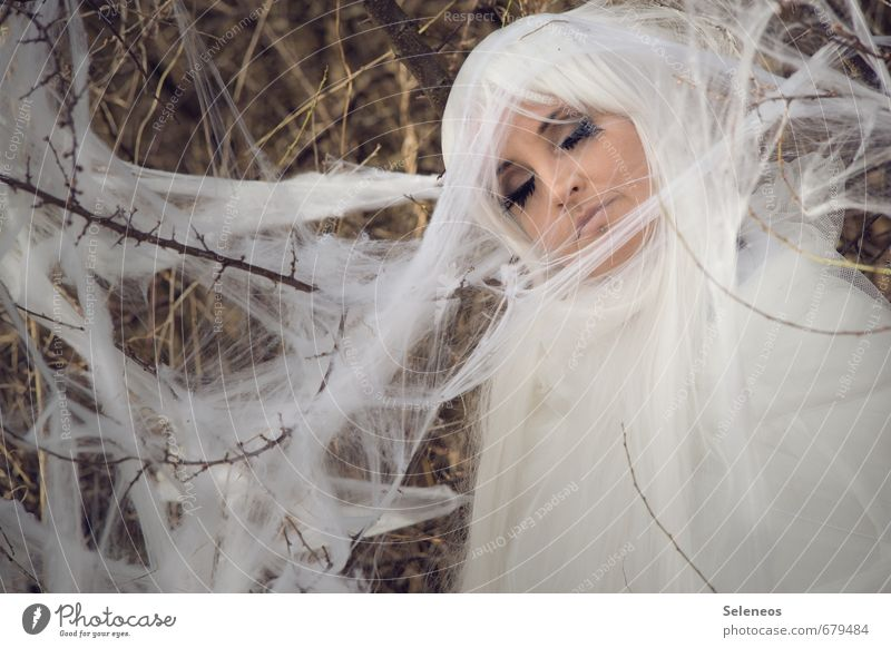 sleeping moth Feminine Woman Adults Face 1 Human being Environment Nature Spring Bushes Hair and hairstyles White-haired Long-haired Wig Animal Moth Cocoon