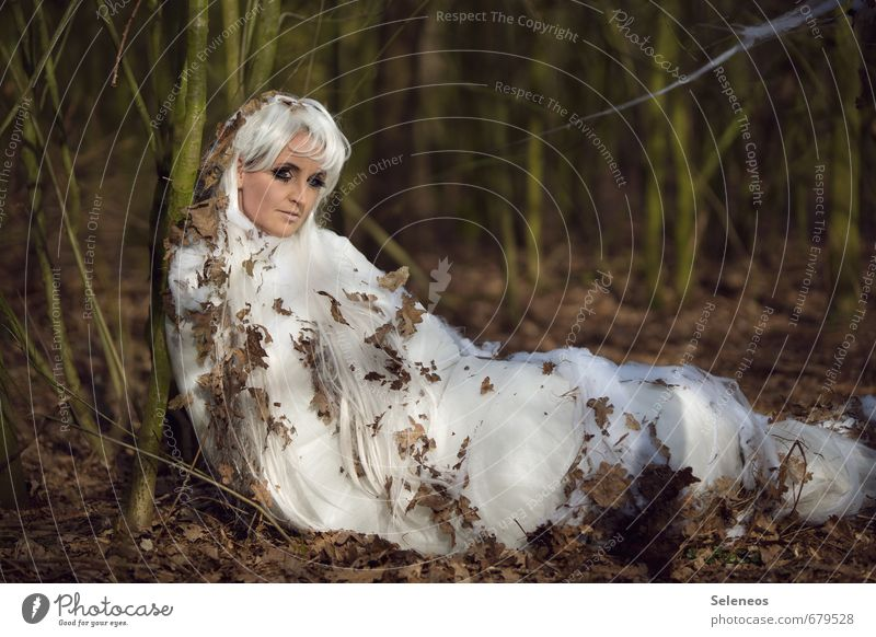 Woman Human being Nature Leaf Winter Adults Environment Autumn Feminine Long-haired Caterpillar Wig White-haired To hibernate