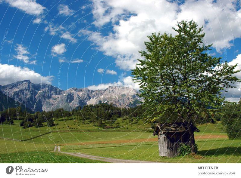 Sky Green Clouds Meadow Mountain Austria Federal State of Tyrol Dream landscape