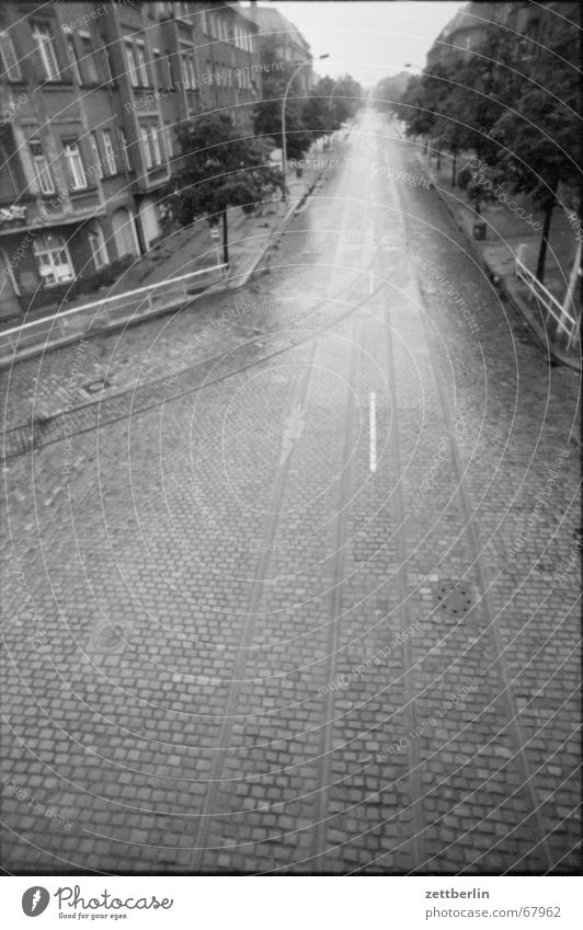 Summer Rain Glittering Wet Empty Railroad tracks Cobblestones Tram