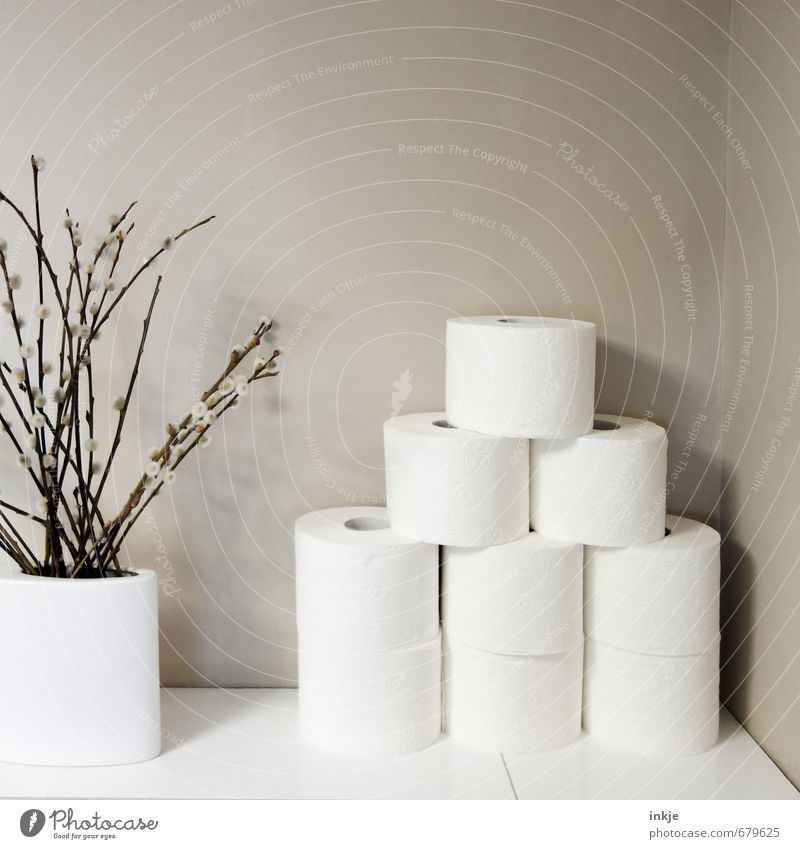 White Wall (building) Emotions Spring Wall (barrier) Brown Living or residing Decoration Simple Clean Blossoming Bathroom Many Stack Vase Twigs and branches