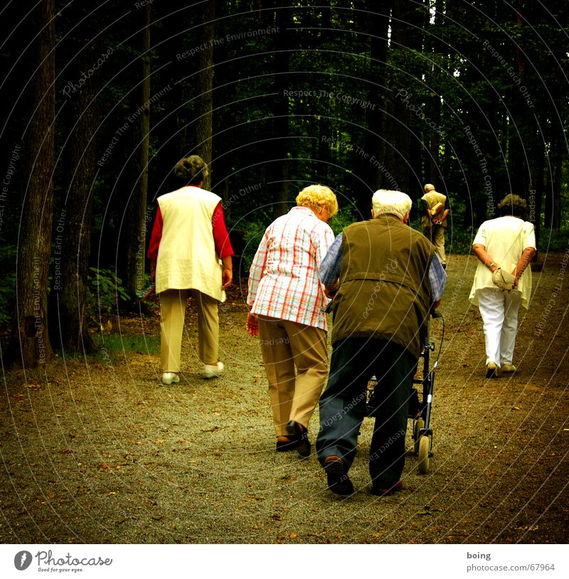 Senior citizen Autumn Going Group Wait Trip To go for a walk Transience Female senior Male senior Human being Promenade Boredom Age Retirement Goodbye