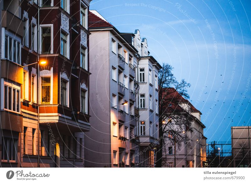 evening mood Town Deserted House (Residential Structure) Facade Calm Housefront Apartment Building Street lighting Sky Bird Window Oriel Leipzig Oversleep