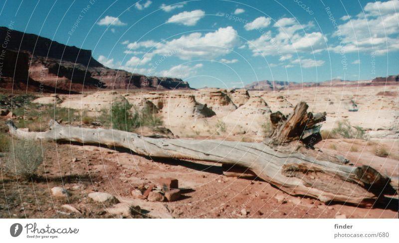 Sky Tree Grass Mountain Sand Rock Steppe