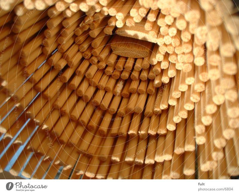 rattan Wood Roller blind Living or residing Nature