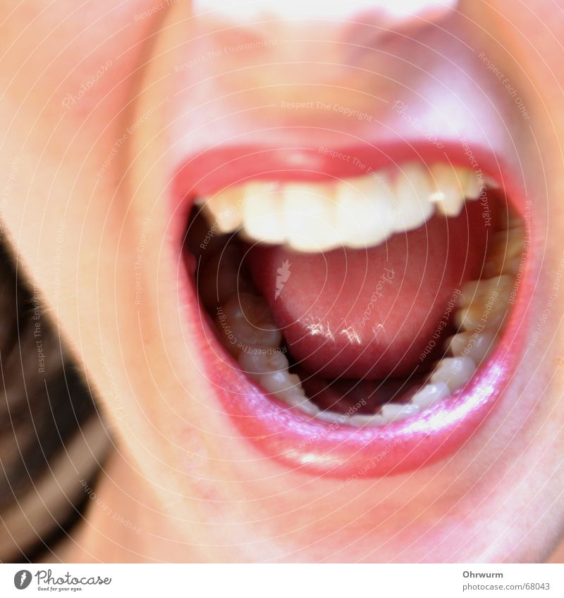 Woman White Red Adults Face Laughter Bright Healthy Mouth Glittering Nose Teeth Lips Anger Scream Distress