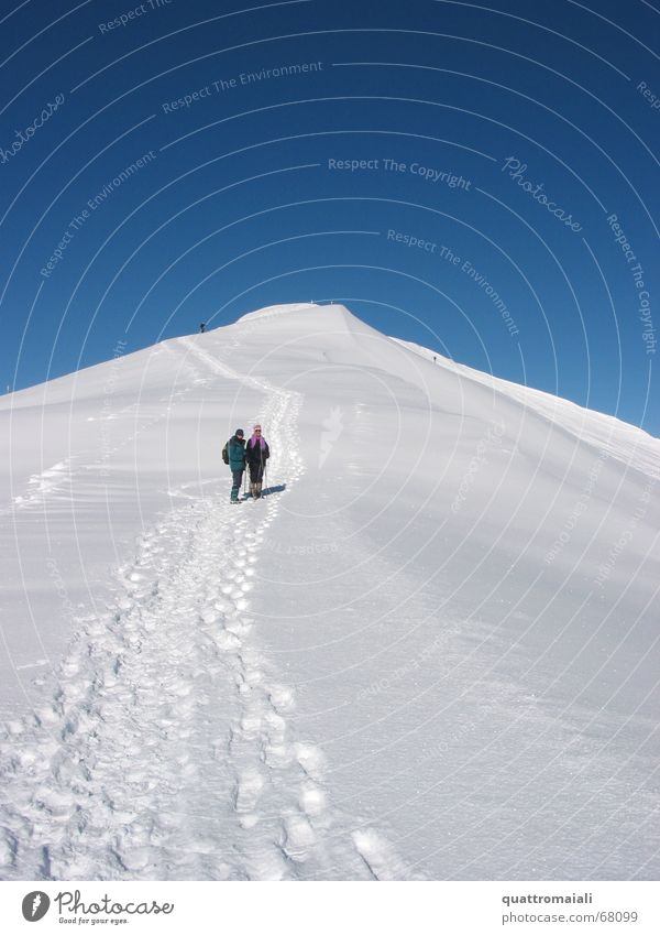 Winter Cold Snow Mountain Ice Hiking Masculine To go for a walk Switzerland Tracks Peak Snow track Grindelwald Snow hiking
