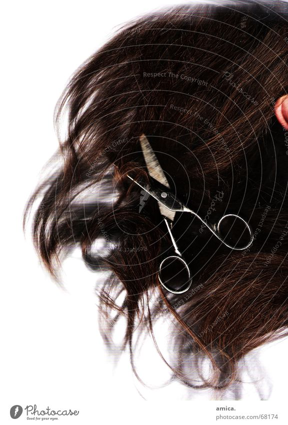 White Black Dark Hair and hairstyles Bright Brown Ear Scissors Human being Skin color