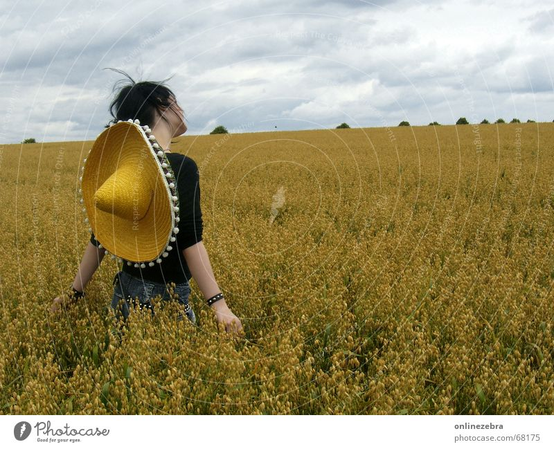 Woman Nature Summer Life Autumn Freedom Landscape Field Back Longing Grain Idyll Hat Cornfield Mexico