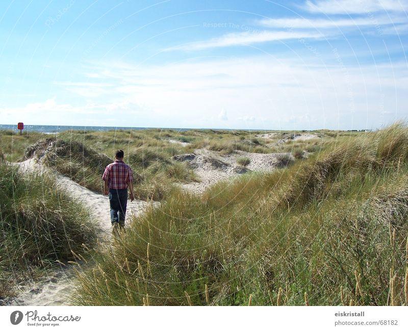 Danish beach Clouds Man Grass Sandy beach Ocean Denmark Sky Blue sky Beach dune Landscape