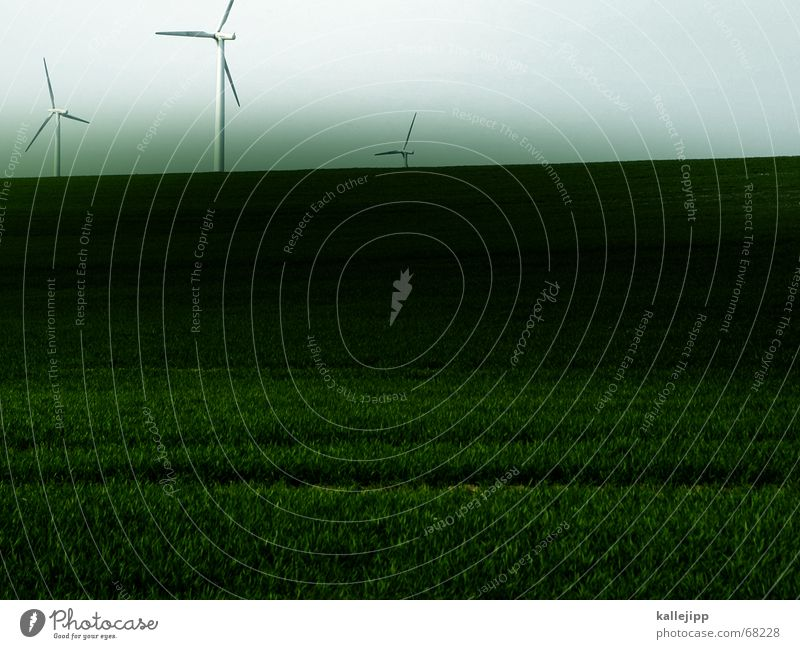 three musketeers Propeller Wind energy plant Electricity Grass May 3 Landscape Lawn Sky Technology Gastronomy Work and employment kallejipp Image editing