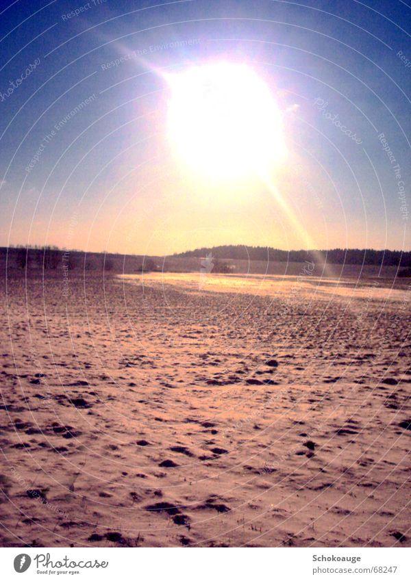 Sun in the snow Exterior shot Friendliness Landscape freedom that seems unattainable Bright Warmth Snow