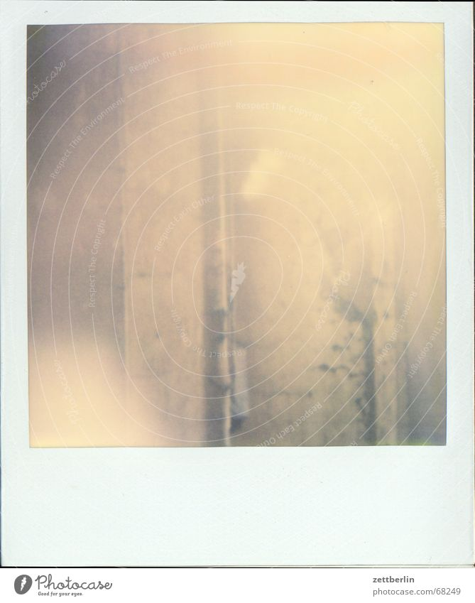Fog Polaroid Rust Plaster Bad weather Diesel Rain gutter Smear