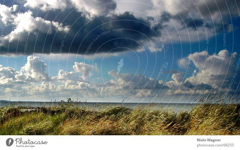 Quickly away before it rains Clouds Ocean Beach Grass Horizon Sailing Rain Water Beach dune Sky Blue