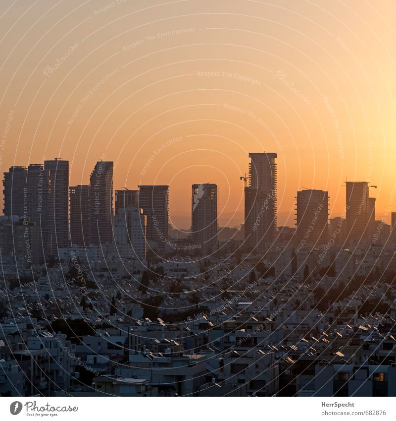 Boker tov, Tel Aviv Sky Cloudless sky Beautiful weather Israel Town Downtown Skyline House (Residential Structure) High-rise Architecture Facade Balcony Roof