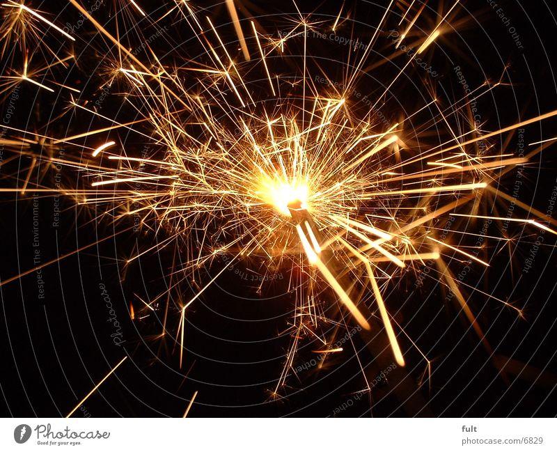 sparkler Sparkler Glittering Things lichens Star (Symbol)