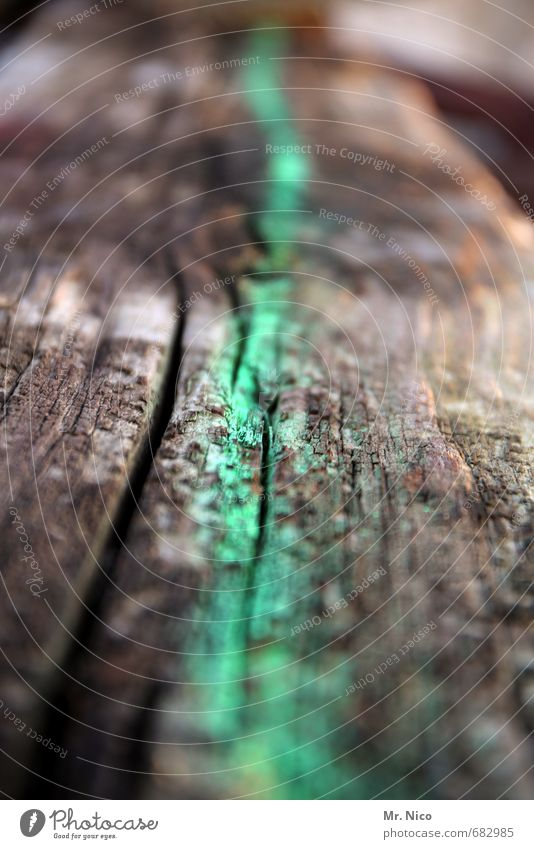 Old Green Dark Environment Dye Lanes & trails Wood Line Dirty Ground Infinity Tracks Derelict Ruin Label Marker line
