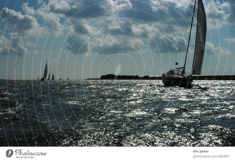 cruise on the ijsselmeer Sailing Ijsselmeer Netherlands Sport boats Waves Success Coast Clouds