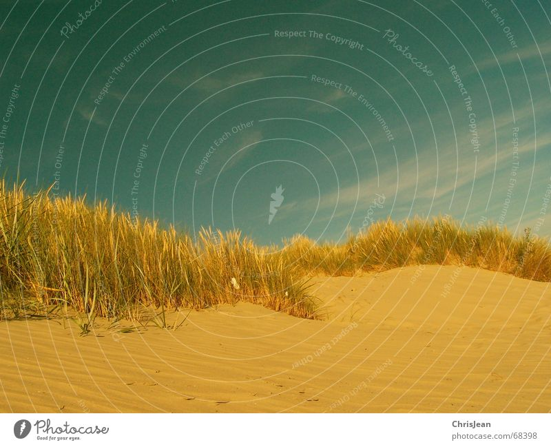 Sky Beach Sand Protection Beach dune North Sea Processed Borkum