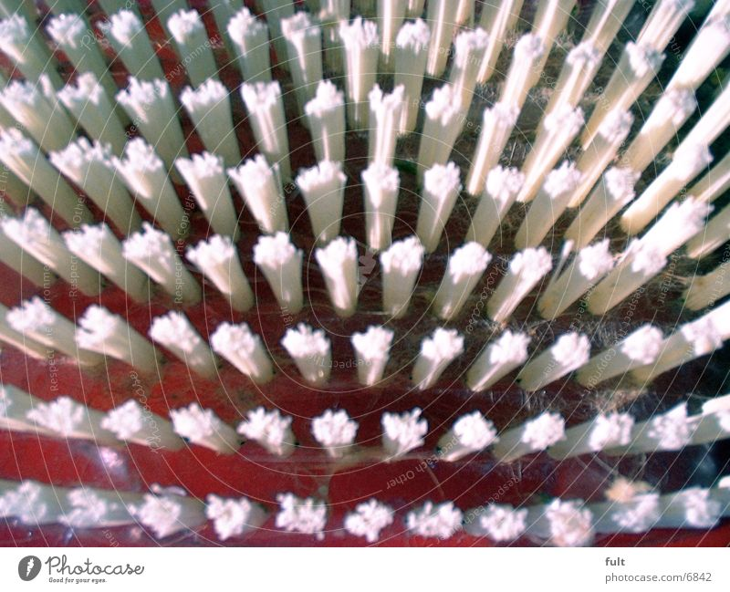 bristles Bristles White Things Statue Macro (Extreme close-up)