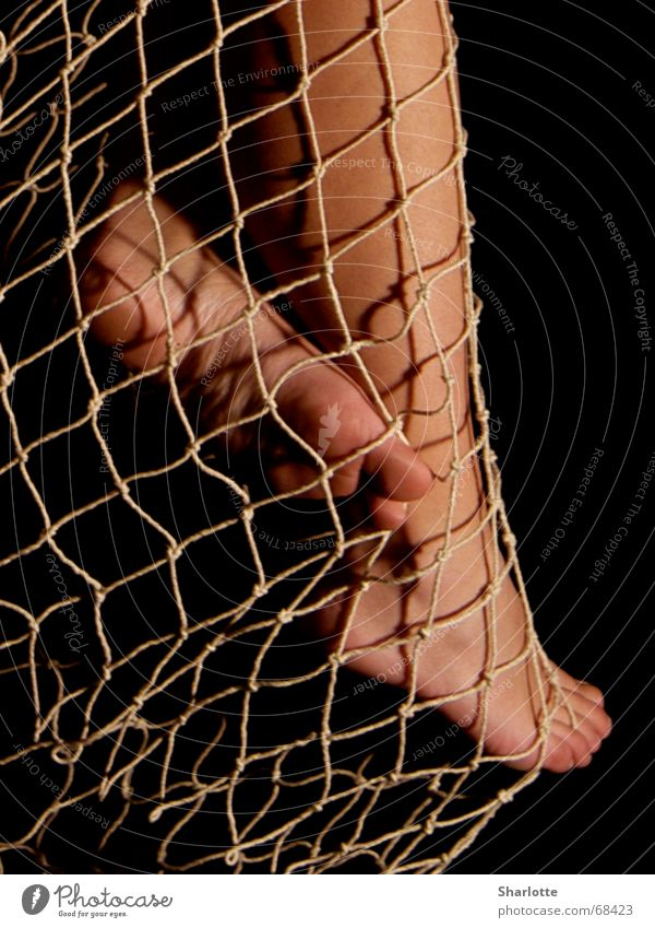 wetted feet Fishing net Toes Sole of the foot Calf Net Feet Legs Ankle Barefoot